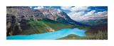 Peyto Lake, Alberta Posters by Dermot O'Kane