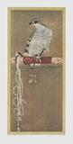 Falcon Prints