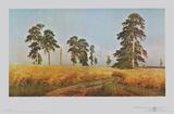 Rye Prints by Iwan Iwanowitsch Schischkin