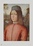 Portrait of a Boy Samlertryk af Pinturicchio