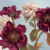 Peony Print by Paul Mathenia