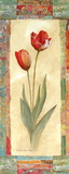 Tulip Montage Prints by Charlene Olson