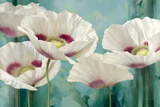 Tasmanian Poppies II Prints by Igor Levashov