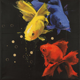 Koi Trio Poster by Antonio Massa