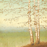 Golden Birch II with Blue Sky Pósters por Wiens, James