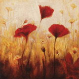 Poppies and Daisies I Prints by Natalie Carter