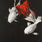 Three Koi Affiches par Antonio Massa