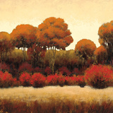 Autumn Forest II Prints by James Wiens