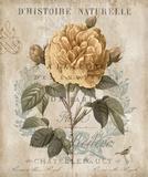 Botanique II Poster by Deborah Devellier
