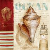 Atlantic Ocean Poster by Conrad Knutsen
