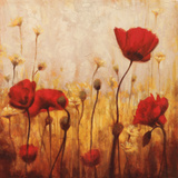 Poppies and Daisies II Posters by Natalie Carter