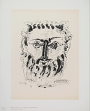 Faun (frontal view) Collectable Print by Pablo Picasso