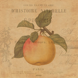 Pomme Prints by Deborah Devellier