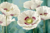 Tasmanian Poppies I Posters by Igor Levashov