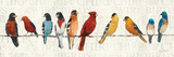 The Usual Suspects (Birds on a Wire) Poster by Avery Tillmon