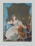 Lady with Dog and Birdcage Collectable Print by Thomas Gainsborough