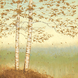 Golden Birch I with Blue Sky Art by James Wiens