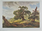 Oak Trees on the Seashore Collectable Print by Carl Gustav Carus