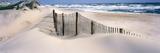 USA  North Carolina  Outer Banks