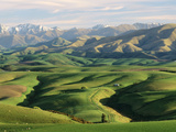 Farmland S Canterbury New Zealand Photographic Print by  Panoramic Images