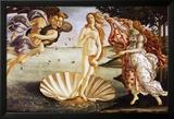 The Birth of Venus, c.1485 Prints by Sandro Botticelli