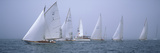 Yachts Racing in the Ocean, Annual Museum of Yachting Classic Yacht Regatta, Newport, Newport Co... Fotografie-Druck von Panoramic Images 