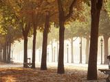 France, Paris, Champs Elysees Photographie par  Panoramic Images