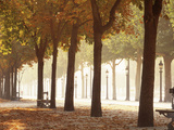 France, Paris, Champs Elysees Photographic Print by Panoramic Images