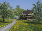 Switzerland, Zug, Road Photographic Print by  Panoramic Images