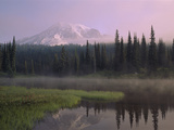 USA, Washington, Mount Rainier National Park Photographic Print by  Panoramic Images