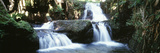 Waterfalls Hilo HI Photographic Print by Panoramic Images