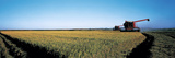 Harvested Rice Field Glenn Co CA USA Photographic Print by Panoramic Images