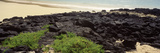Lava Rocks at a Coast, Floreana Island, Galapagos Islands, Ecuador Photographic Print by  Panoramic Images