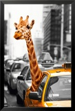 New York - Safari Poster