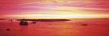 Sunrise Chatham Harbor Cape Cod MA USA Photographic Print by  Panoramic Images