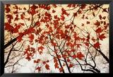 Blätterlose Äste und rote Ahornblätter Poster