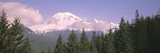 Mt Ranier Mt Ranier National Park WA Photographic Print by  Panoramic Images