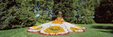 Sculpture Made of Flowers in a Garden, Mainau Island, Lake Constance, Baden-Wurttemberg, Germany Photographic Print by  Panoramic Images