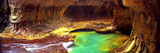 Rock Formations in a Slot Canyon, the Subway, Zion National Park, Utah, USA Photographic Print by  Panoramic Images