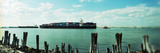 Container Ship in a River, Staten Island, New York City, New York State, USA Photographic Print by  Panoramic Images