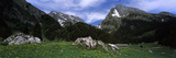 Mountains in a Forest, Mt Santis, Mt Altmann, Appenzell Alps, St Gallen Canton, Switzerland Photographic Print by  Panoramic Images