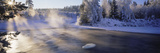 Snow Covered Laden Trees, Dal River, Sweden Photographic Print by  Panoramic Images
