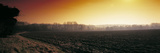Plowed Fields in Winter at Sunset, Norfolk, England Photographic Print by Panoramic Images 