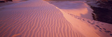Sand Dunes at Sunset, Outer Banks, North Carolina, USA Photographic Print by  Panoramic Images