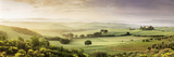 Trees in a Field, Villa Belvedere, San Quirico D'Orcia, Val D'Orcia, Siena Province, Tuscany, Italy Photographic Print by  Panoramic Images