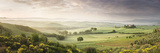 Foggy Field, Villa Belvedere, San Quirico D'Orcia, Val D'Orcia, Siena Province, Tuscany, Italy Photographic Print by  Panoramic Images