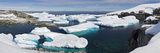 Icebergs Floating in the Sea, Petermann Island, Antarctica Photographic Print by  Panoramic Images