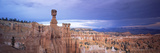 Rock Formations on a Landscape, Thor's Hammer, Bryce Canyon National Park, Utah, USA Photographic Print by  Panoramic Images