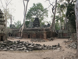 Ta Phrom, the Jungle Temple, Siem Reap, Cambodia Photographic Print by  Panoramic Images