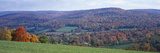 Trees on a Hill, Adams, Berkshire County, Massachusetts, USA Photographic Print by  Panoramic Images